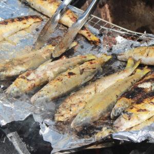 海鮮系メインのBBQをやってきた。鮭とか鮎の塩焼きが美味しすぎて、これは肉を焼くよりも良いんじゃないか?