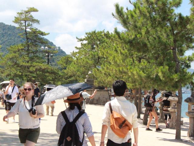撮影しながら厳島神社へ向かう