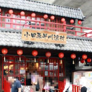 小田原早川漁村のしらす専門店『しらす市場』で生しらす丼を食べてきました。三色のしらすを堪能できる『湘南しらすの三色丼』が絶品!