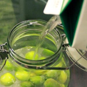 南高梅で作ろう!かんたん美味しい自家製の梅酒の作り方を紹介!材料は梅と蒸留酒と氷砂糖だけ!