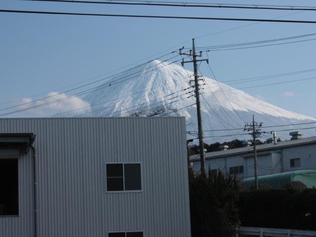 静岡県から見た早朝の富士山