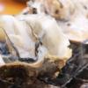広島県廿日市市のかき小屋『島田水産』水揚げ場所で提供される新鮮な牡蠣料理を食べ尽
