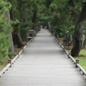 静岡県の世界文化遺産『三保の松原』に行ってきました!神の道、羽衣の松、羽車神社など見てきた。